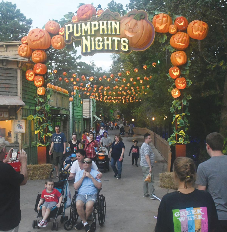 pumpkins 2