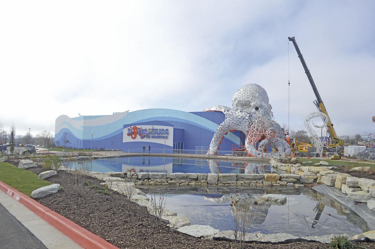 Long-awaited Branson aquarium is now open