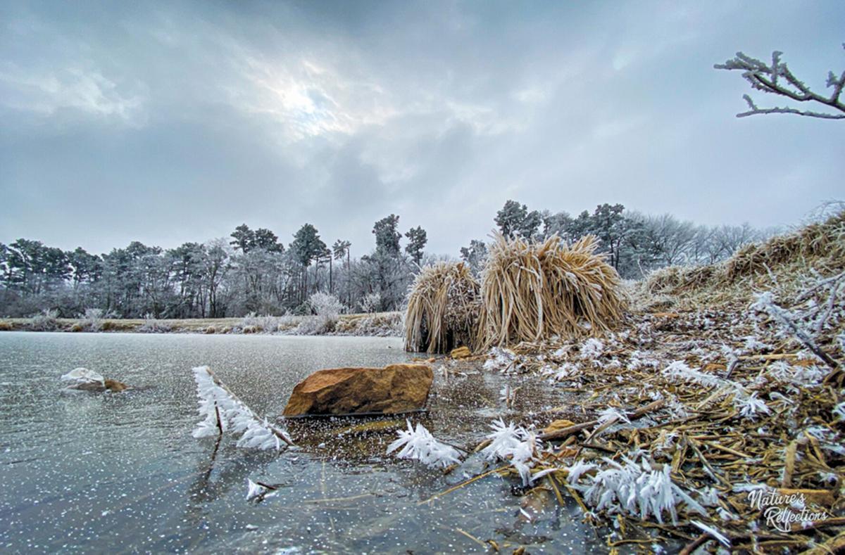 Athena Rees Icy Photo 3.jpg