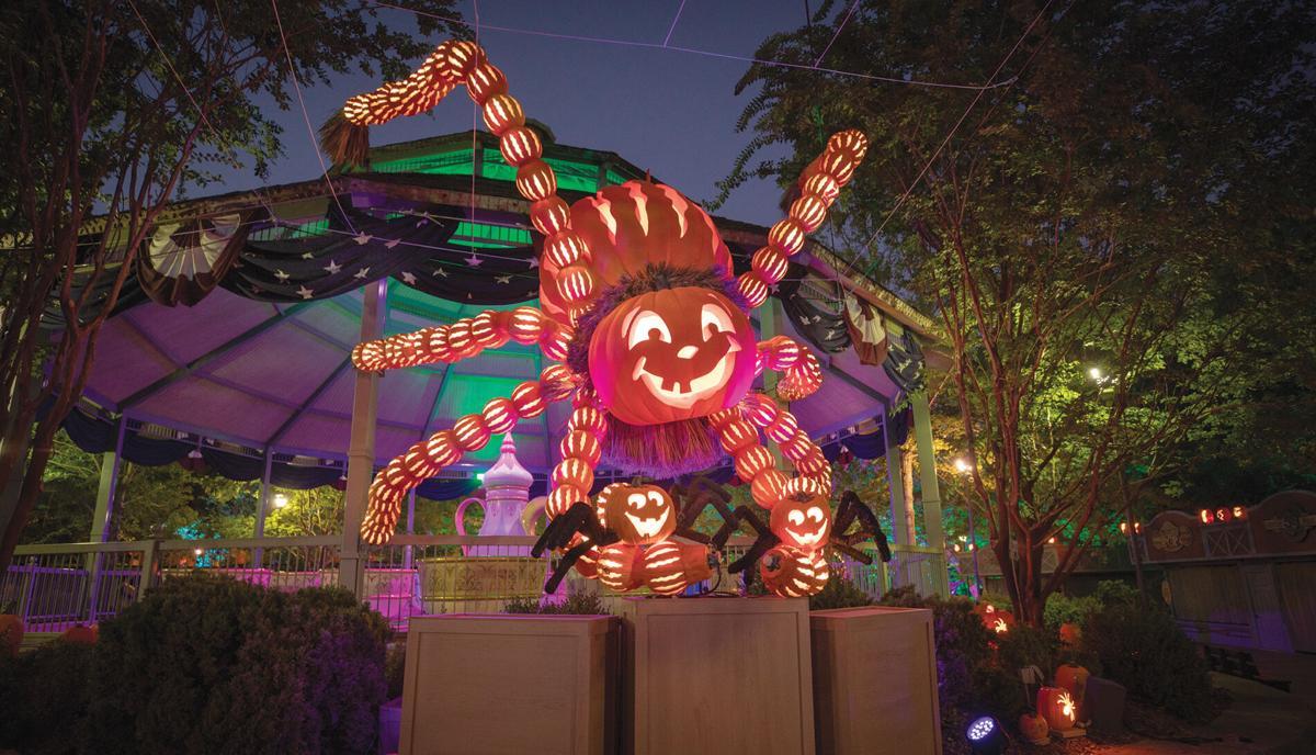 19. Spider Front.jpg