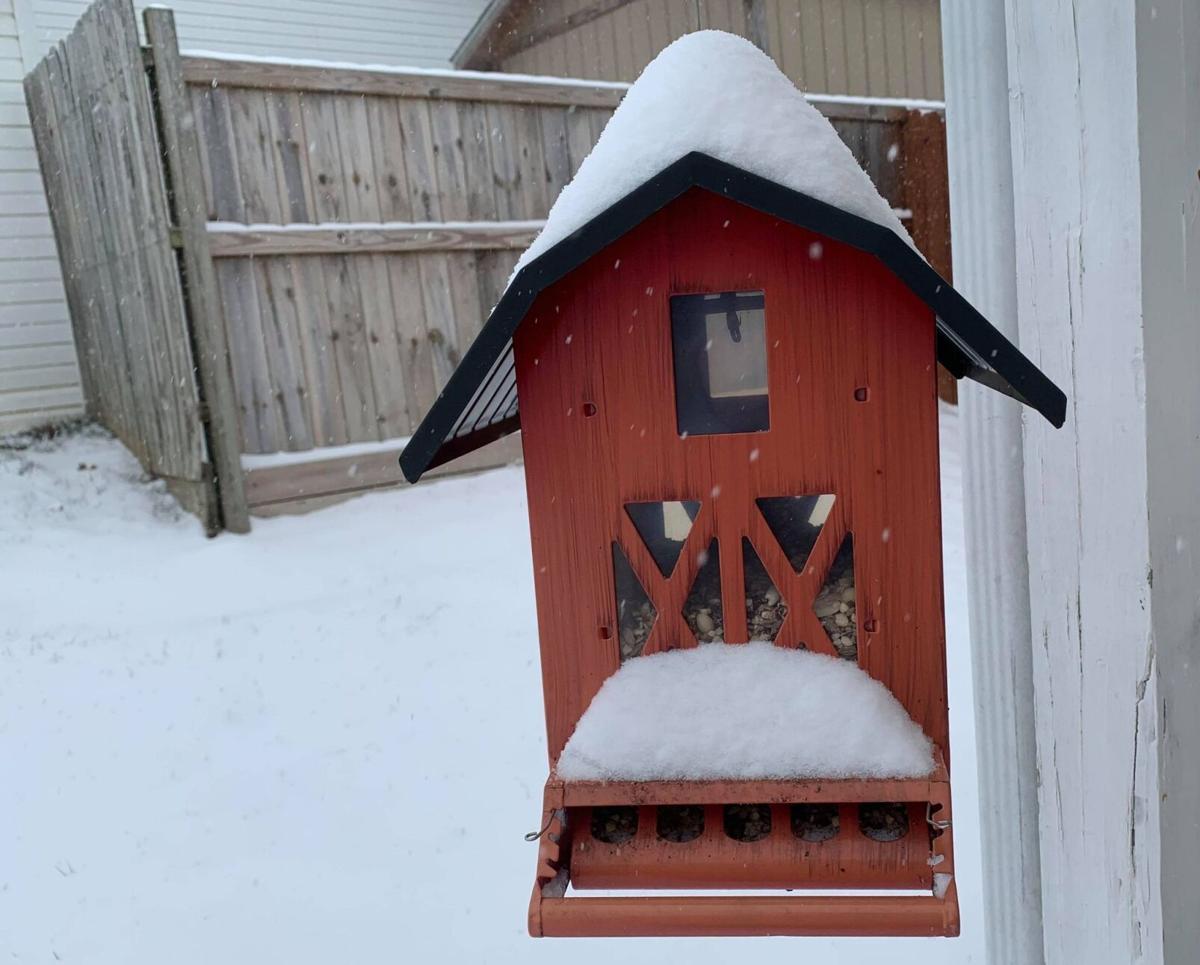 Snow Day 2 021521.jpg