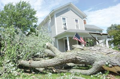 Microburst killed the West Unity storm and the trees | Local News