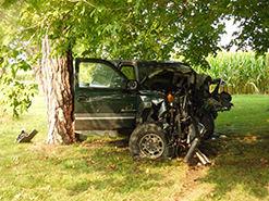 Vehicle ignites after striking tree