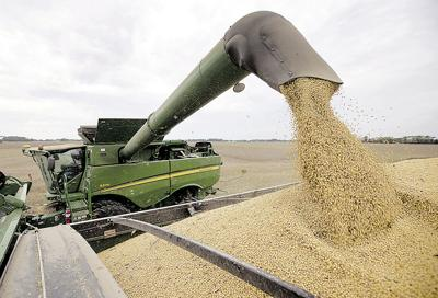 Government Shutdown Agriculture