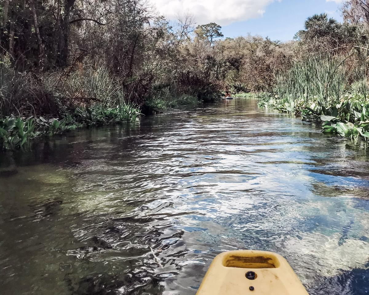 Kings-Landing-Kayak-Trip-1.jpg
