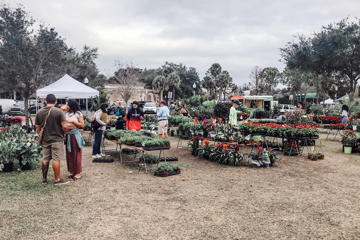 Winter-Park-Farmers-Market-Plants.jpg