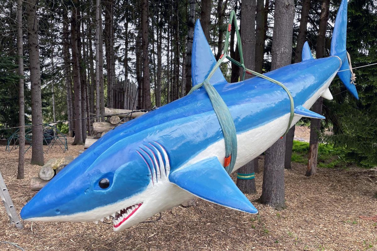Blueberry-Treehouse-Farm-shark.jpg
