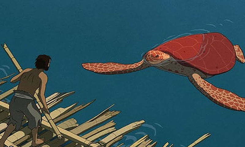 The Red Turtle Is A Great Achievement Entertainment Buffalonews Com
