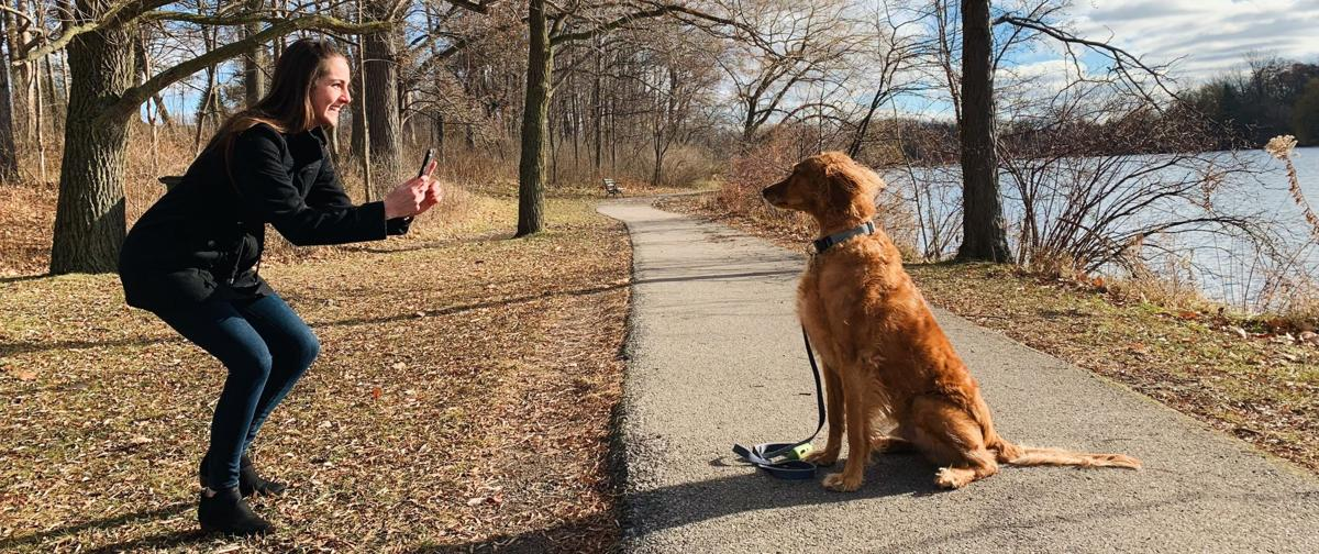 instagram dogs toby goldendoodle