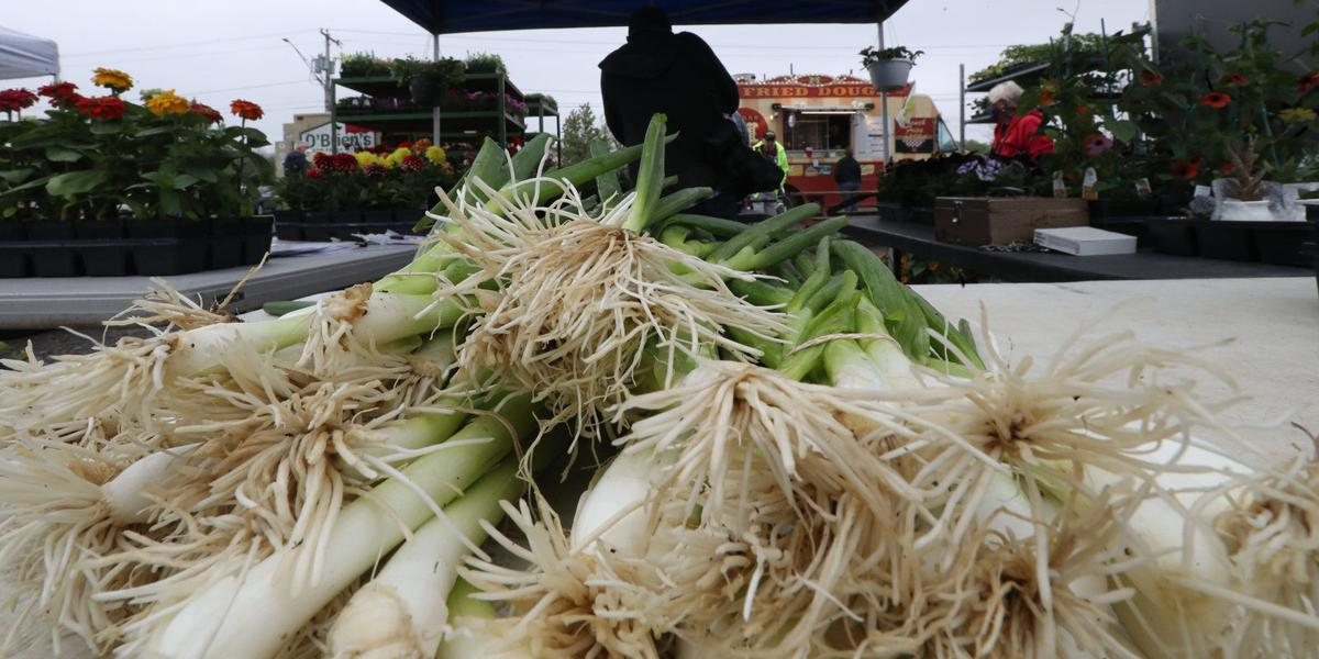 Eden Farmers Market (copy) onions