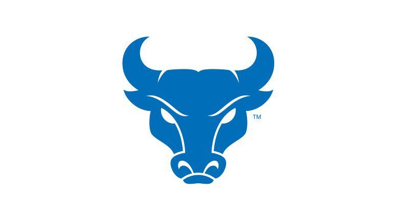UB Bulls logo horizontal