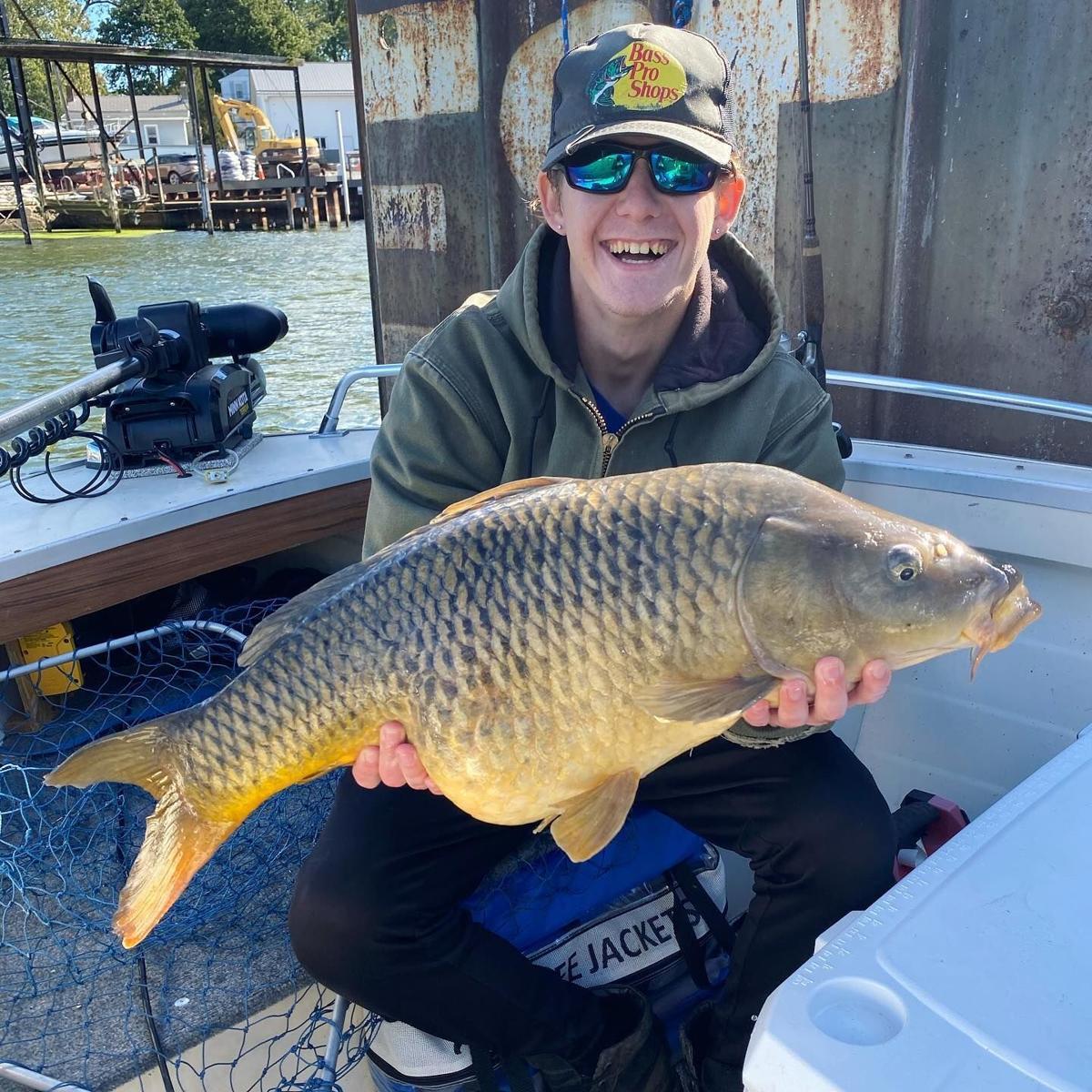 Olcott Harbor carp