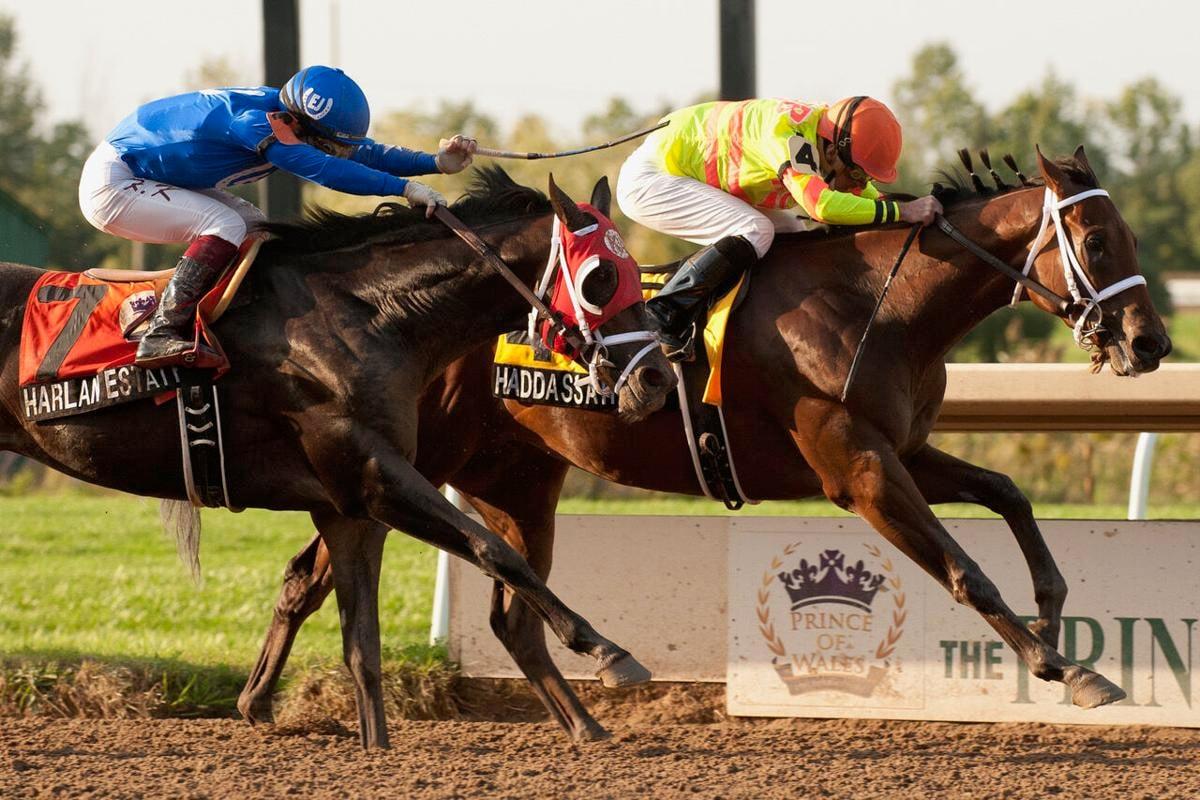 Jockey Gary Boulanger Haddassah Prince of Wales Stakes
