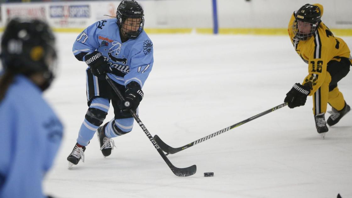 Beauts, NWHL season to begin in January