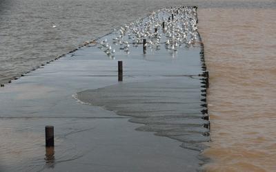 flooding lake ontario   HICKEY