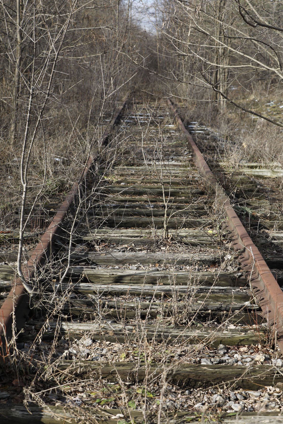 LOCAL RAILS TO TRAILS GEE