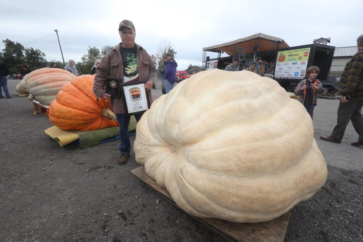 pumpkin44557