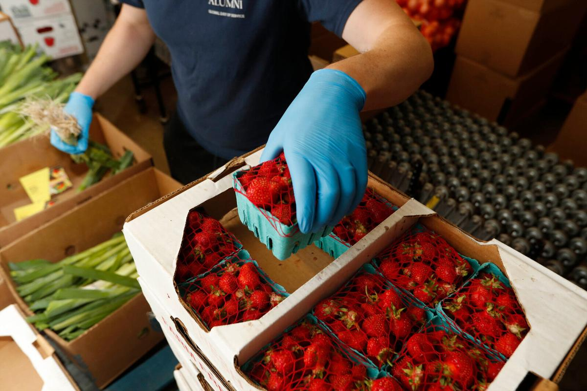 FreshFix delivering local strawberries, much more