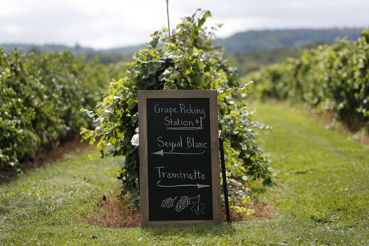 Johnson Estate Winery signage