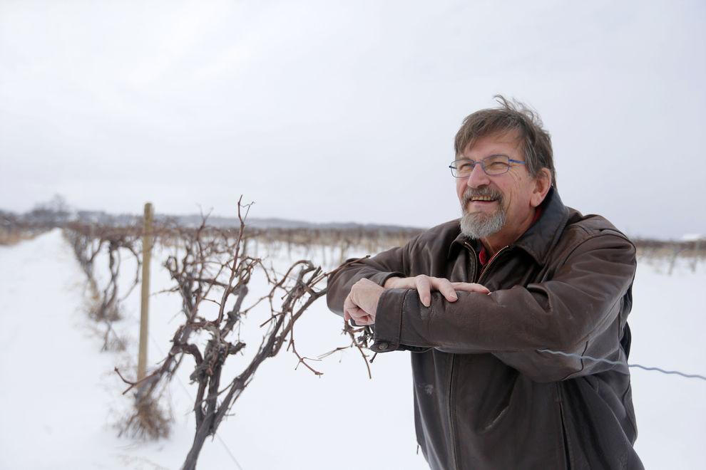 Niagara-Landing-Winery-Grape-Grower-Peter-Smith-Spotted-Lantern-Fly-Mulville