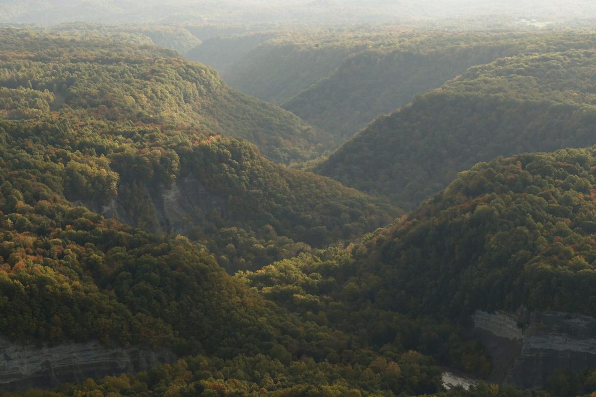 LOCAL AERIAL GEE zoar valley