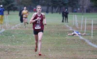 Section VI cross-country championships