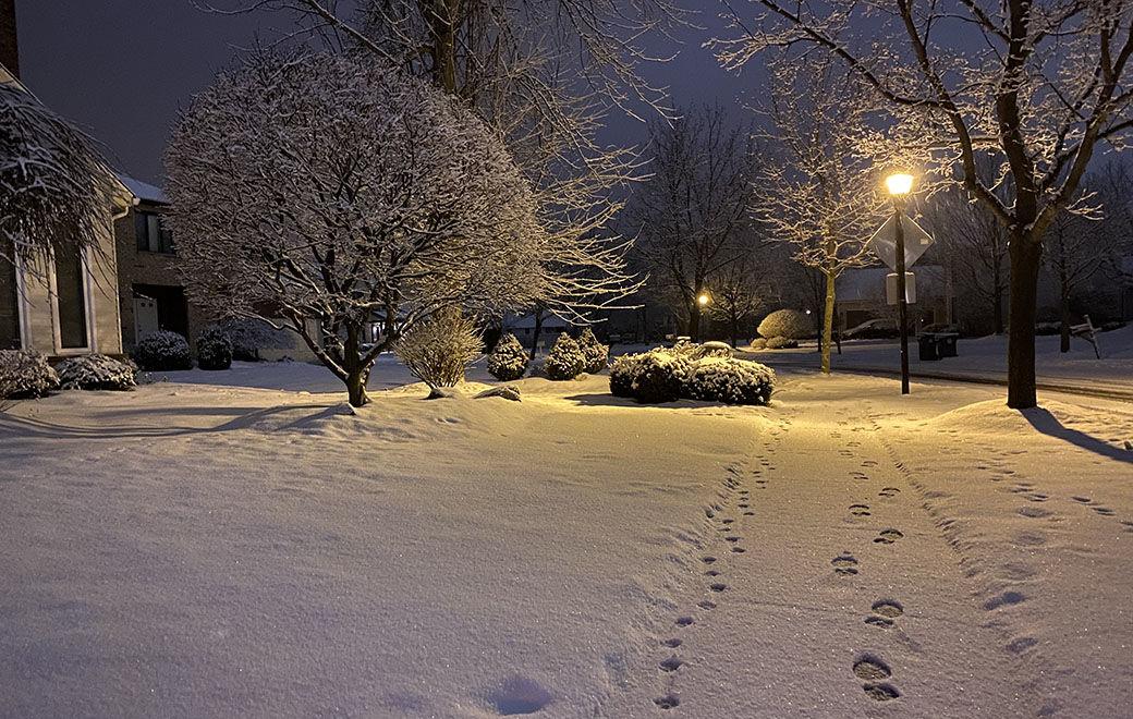snow IMG_4941