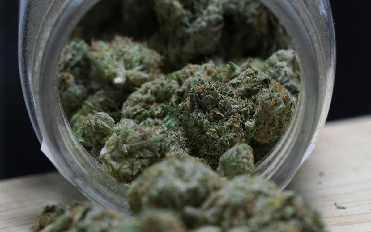 Marijuana Licenses