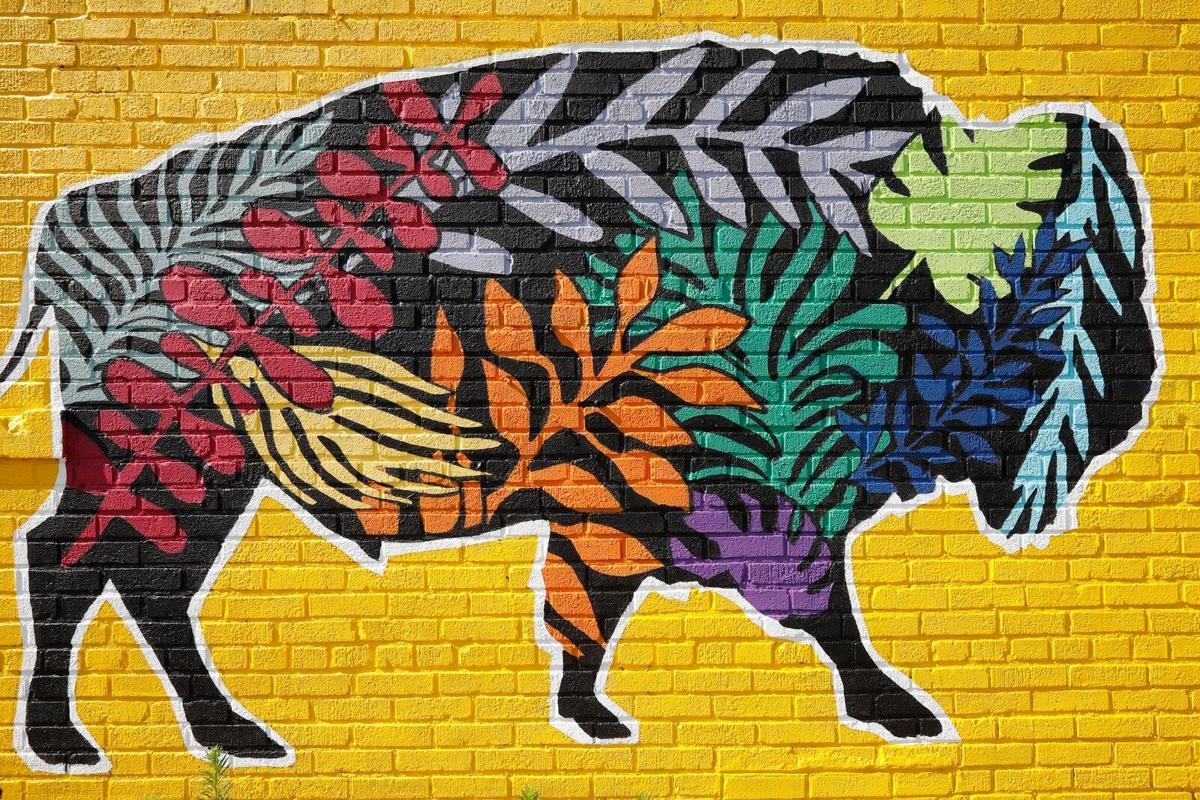 Gallery: Explore Buffalo's new murals