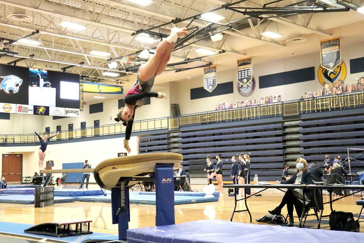 Gymnastics-2WEB.jpg
