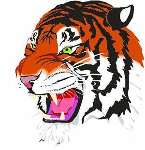 Webster Tigers logo