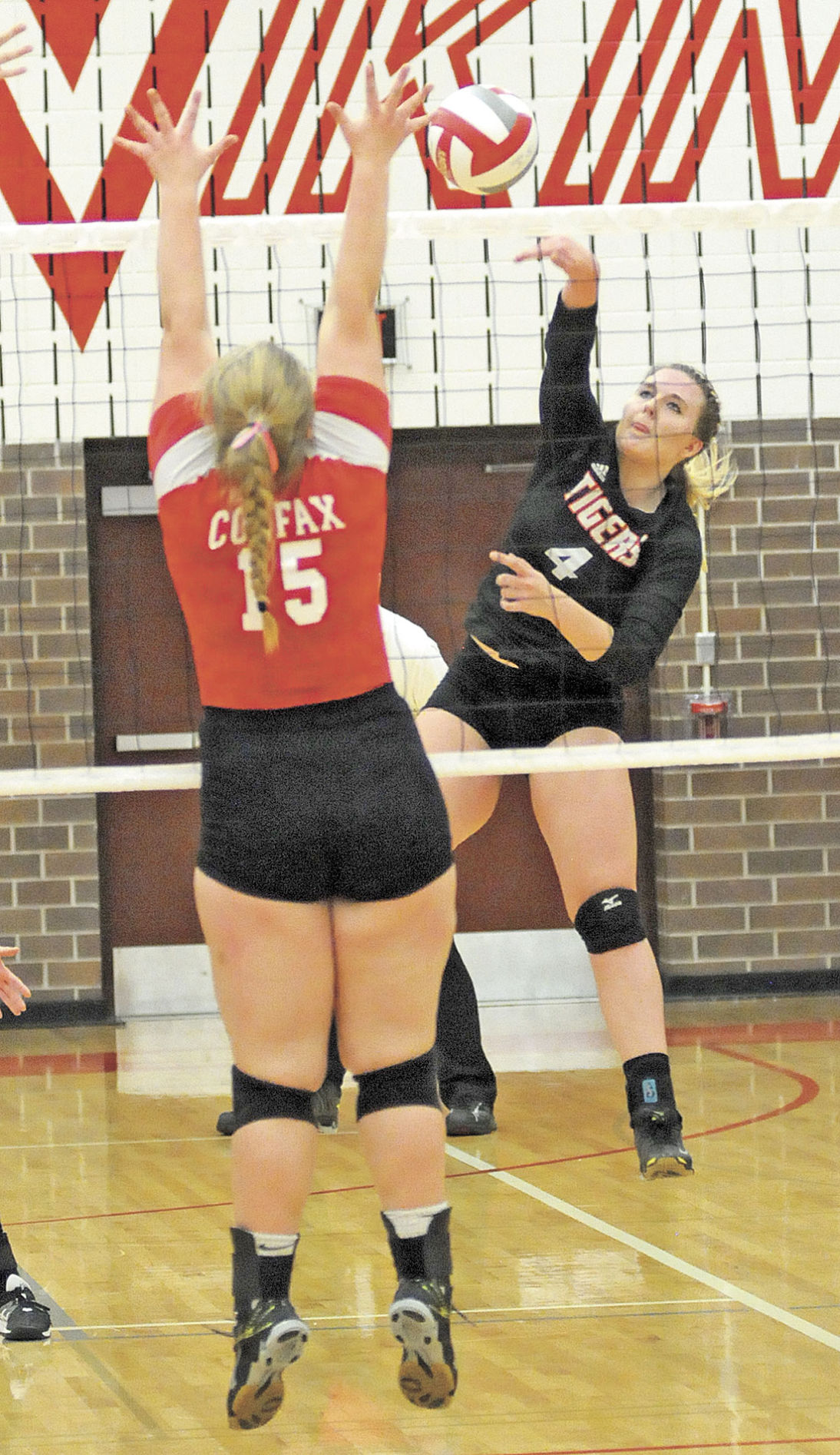 Vikings end Webster's volleyball season