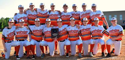 Tigers move on to Sectional play