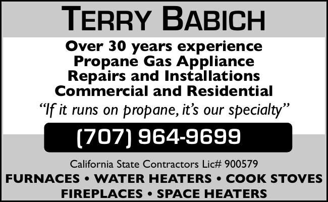 TERRY BABICH Over 30 years experience