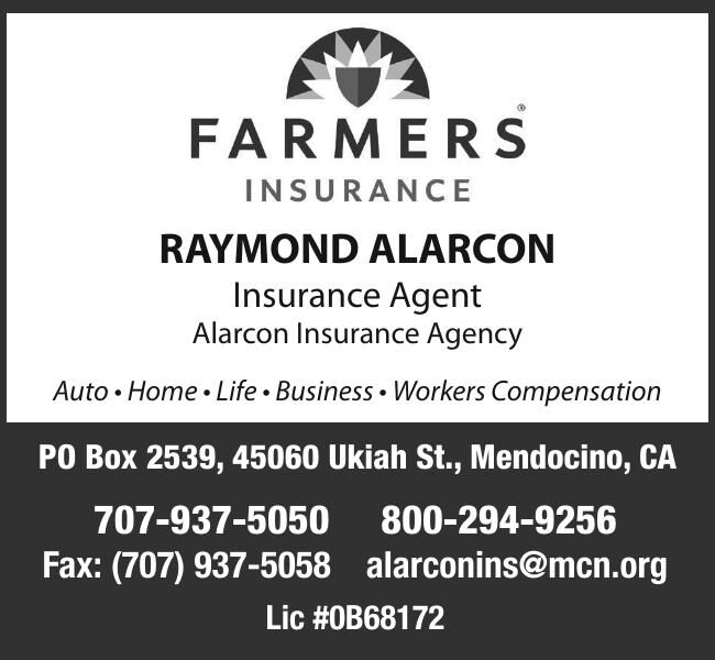 RAYMOND ALARCON Insurance Agent Alarcon