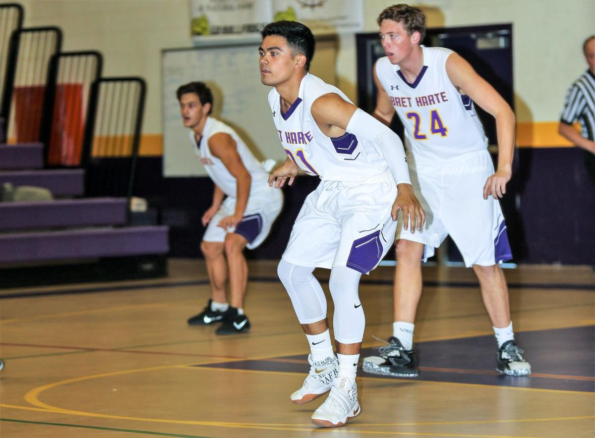 Bret Harte Male Athlete of the Year Runner-up: Michael Costa
