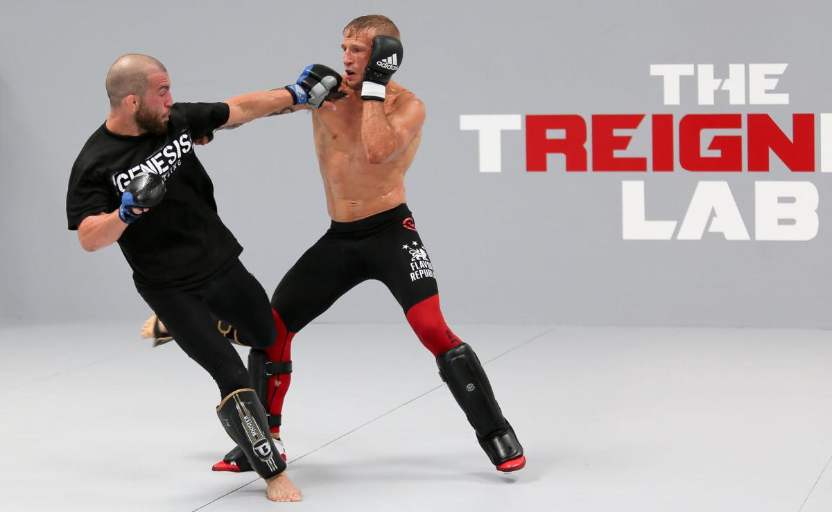From training, to being a dad, UFC champion TJ Dillashaw is never idle
