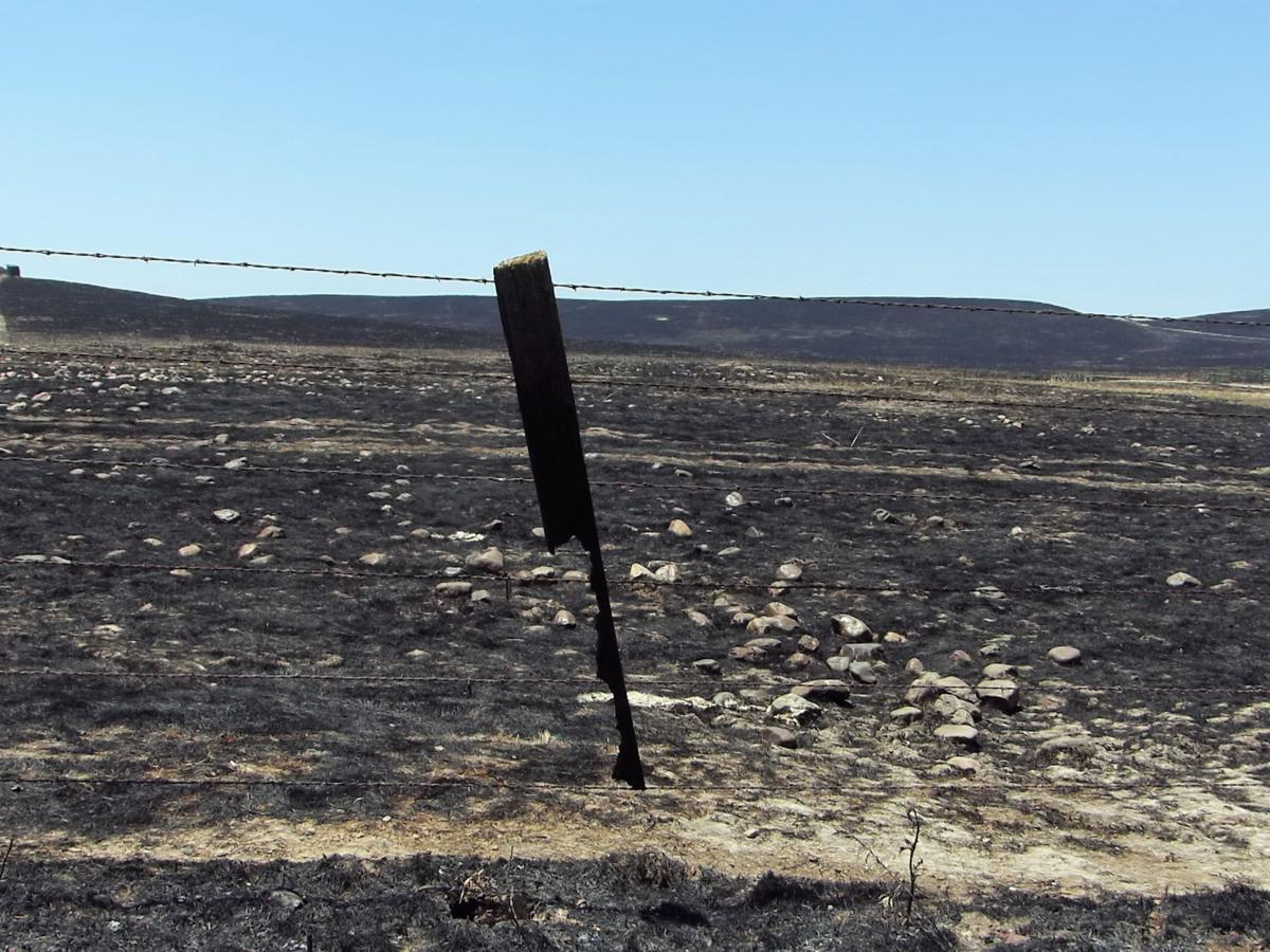 Ranchers work to recover after the Waverly Fire