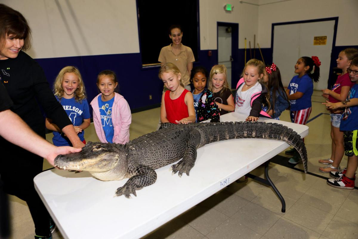 Wild things make Michelson students sing