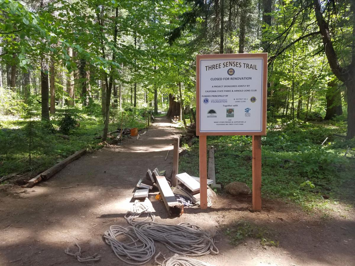 Braille Trail at Big Trees gets a facelift