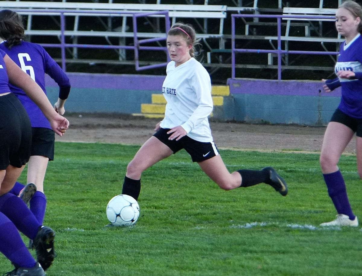 Year in review: Looking at Bret Harte's memorable moments, teams and breakout athletes