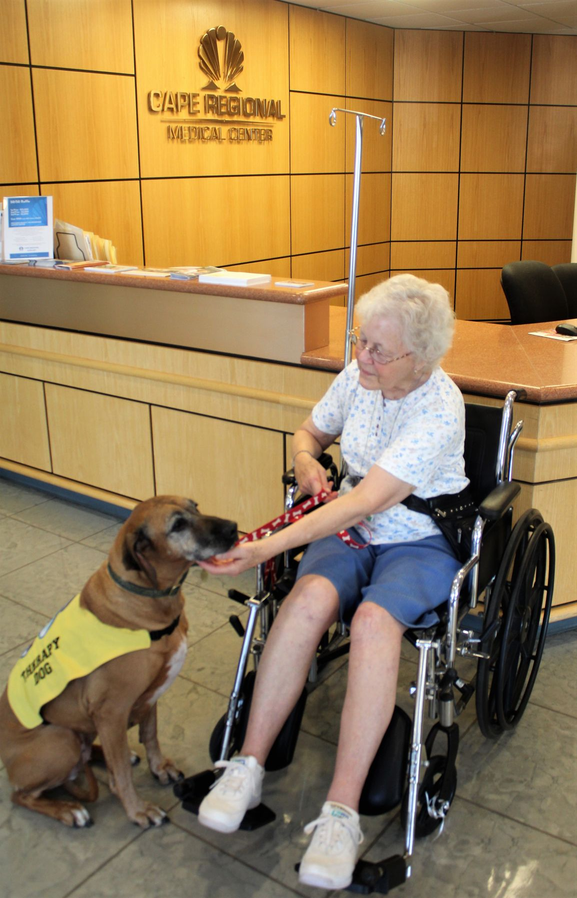 Therapy Dogs Make Patients Smile