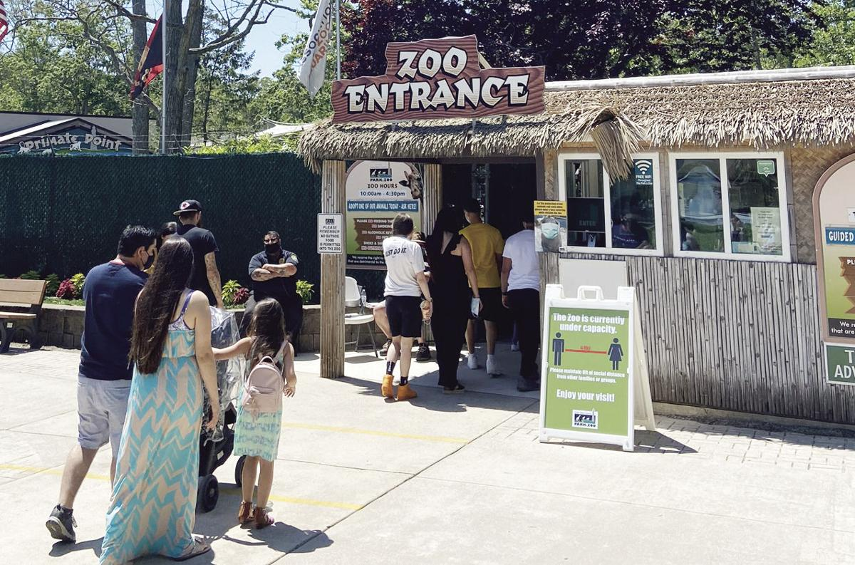 Visitors Return to Reopened Zoo