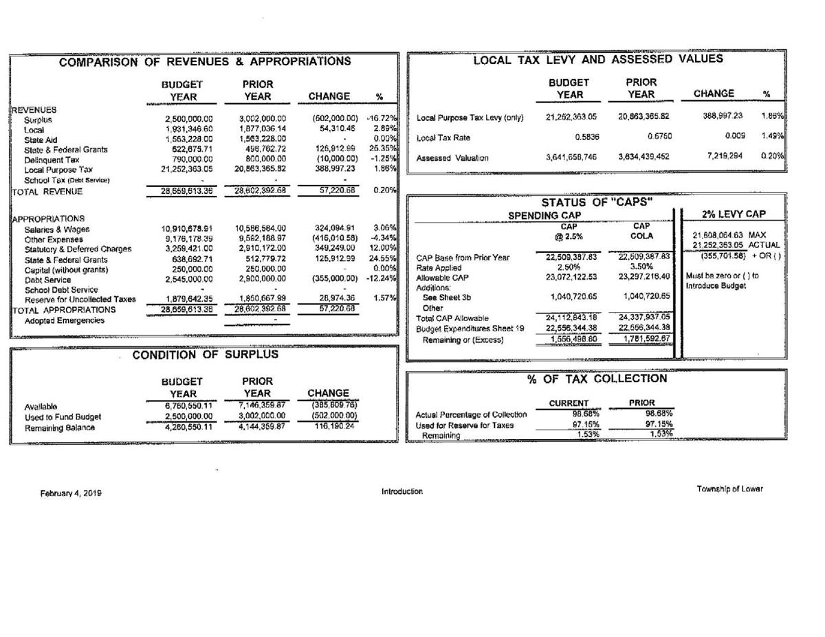 Lower Township Introduced Budget 2019