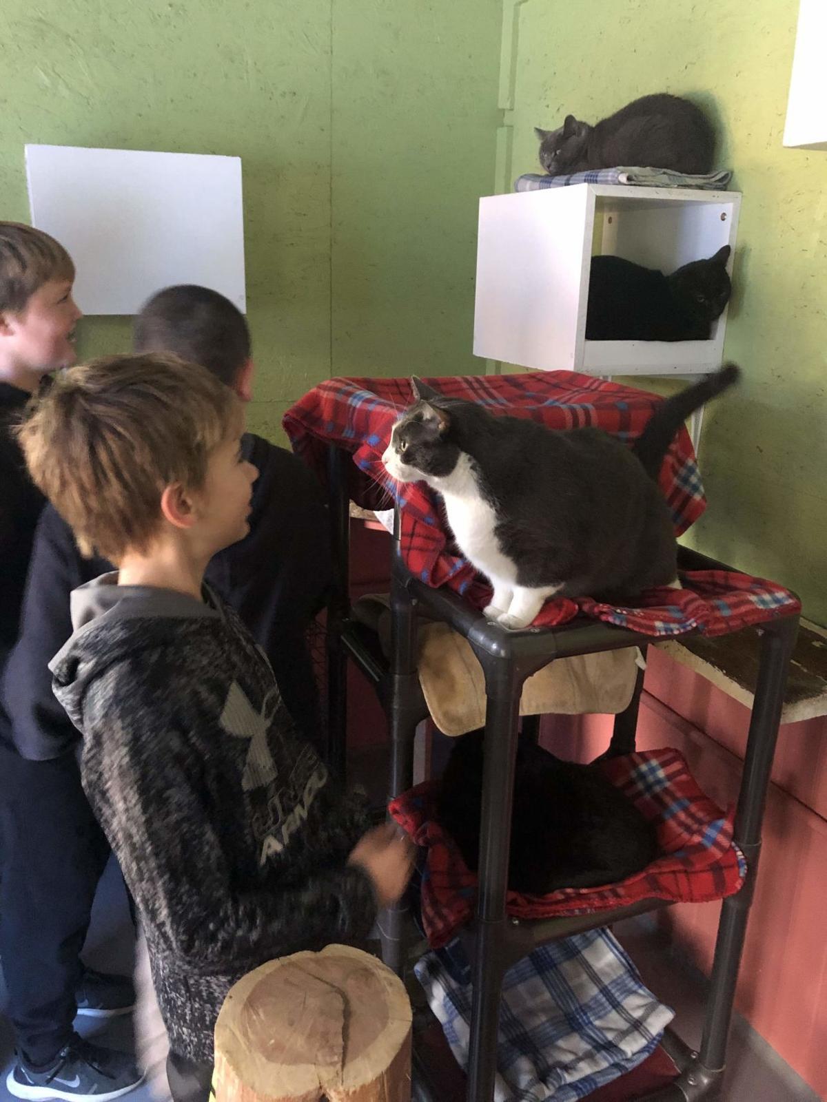 Dennis Township School Posts Recent Activities