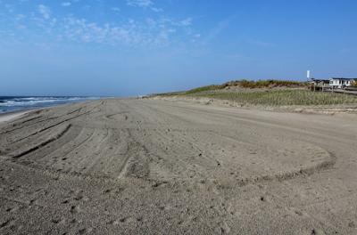 Avalon Beach.jpg