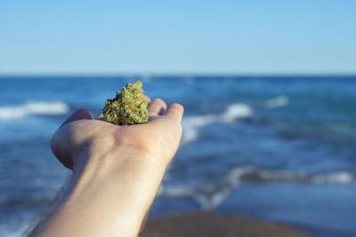 Beach Marijuana - Shutterstock.jpg
