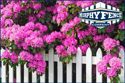 Caring for Your Fence This Spring