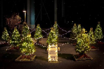 Cape Assist to Light the Night at Tree of Hope Event