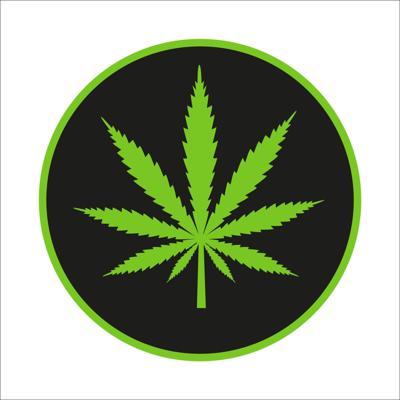 Study: Legal Marijuana in 2 States Had Minimal Effect on Crime